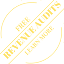 REVENUE AUDITS (1)
